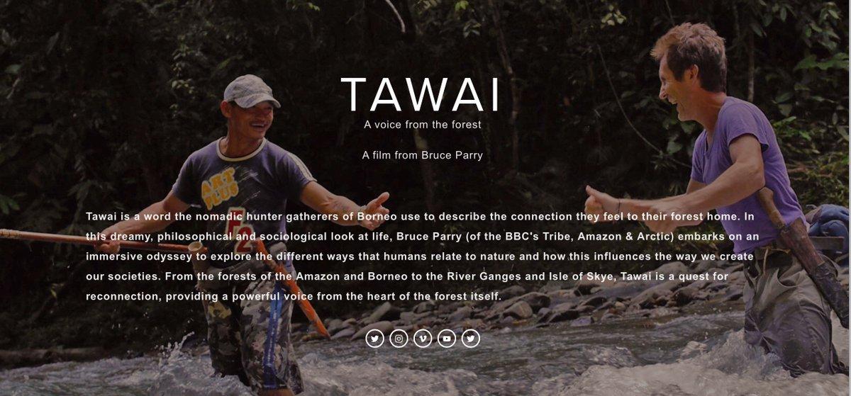 "Review of the film ""Tawai"""